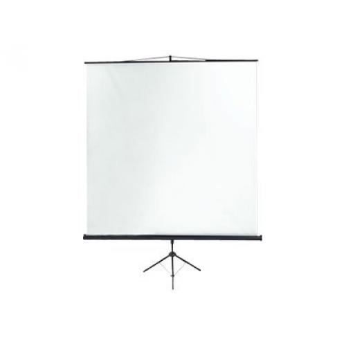 Metroplan Budget Tripod Screen